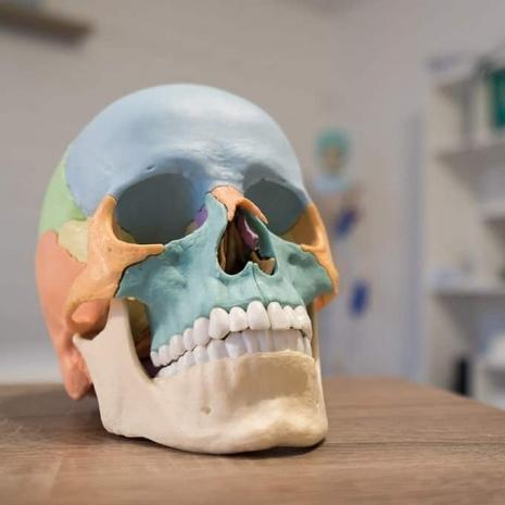 Osteopathin Sara Schu